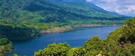 tai-chi-bali-mountain-retreat-2013-02